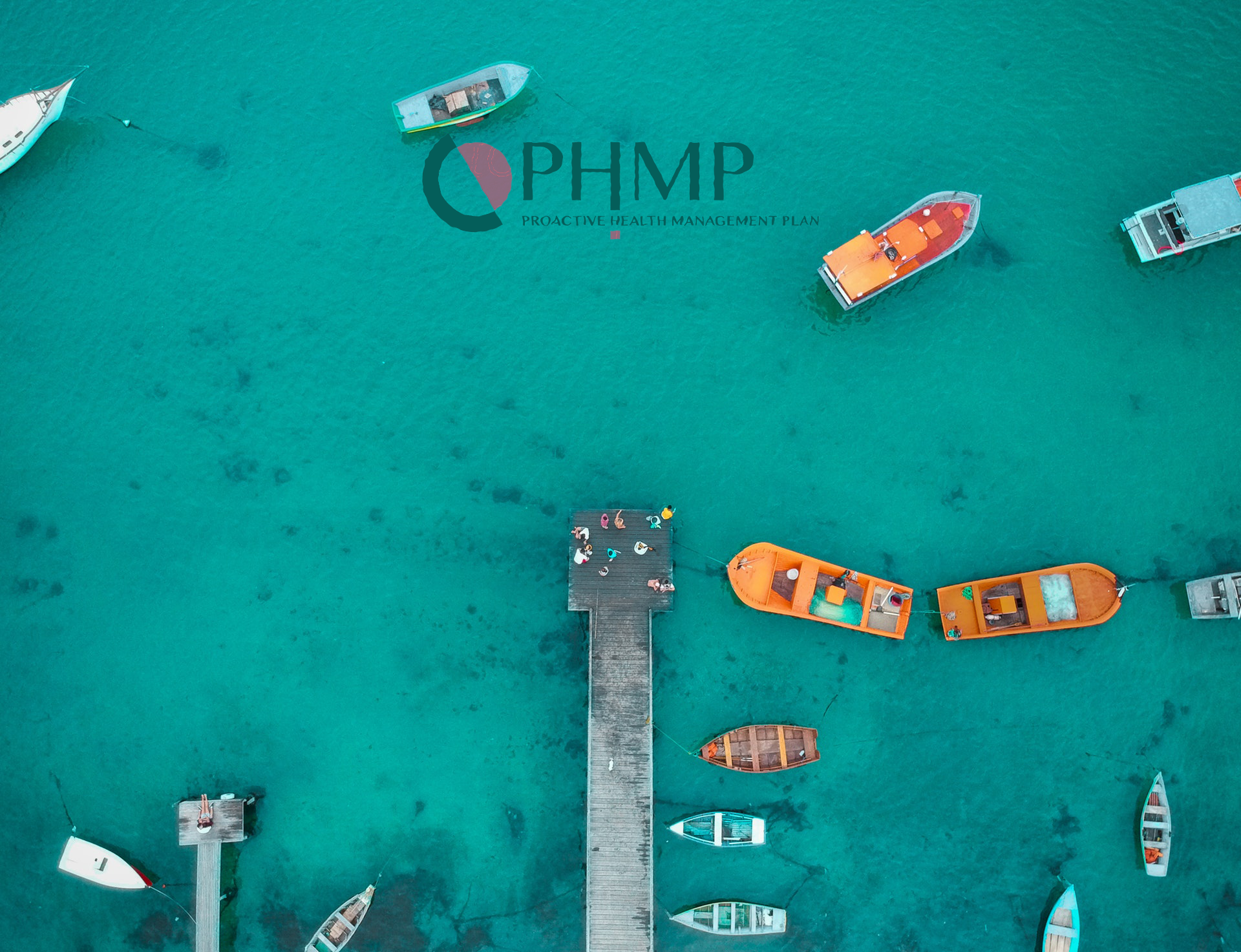 About the PHMP
